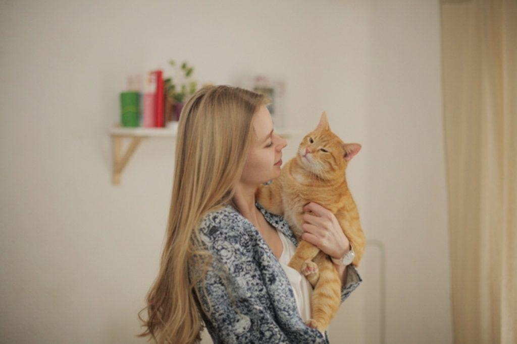 猫を抱っこする飼い主